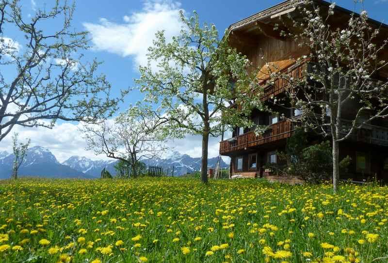 Frühling am Pillberg in Tirol, hinten das Karwendel mit Schnee