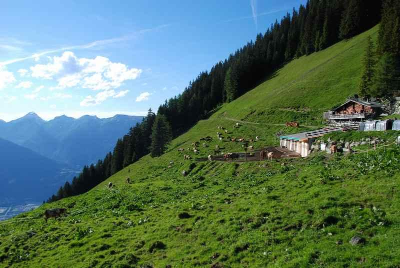 Am Schutzwaldsteig wandern zur Proxenalm, Kellerjoch Wanderung