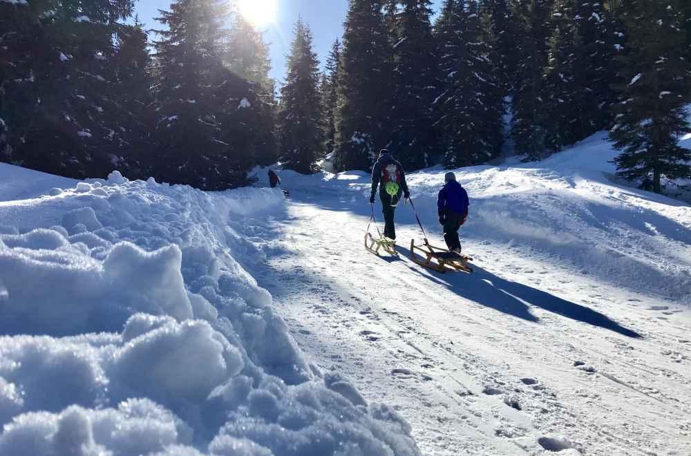 Rodelbahn Zillertal - kilometerlange Abfahrten machen Spaß, hinauf wandern oder mit der Bahn