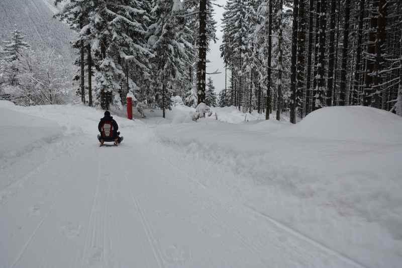 Zugig geht es zum Rodeln nach Jenbach auf der Rodelbahn in Tirol