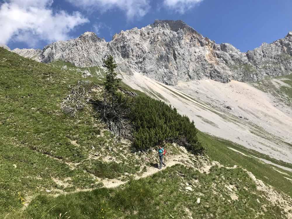Auf dem aussichtsreichen Höhenweg wandern wir zur Rotmoosalm