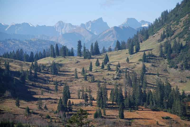 Zur Rotwandalm mountainbiken im Karwendel, in Richtung Juifen