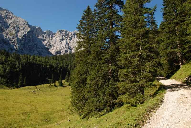 Nach dem langen Anstieg im Wald kommt die Wettersteinalm.