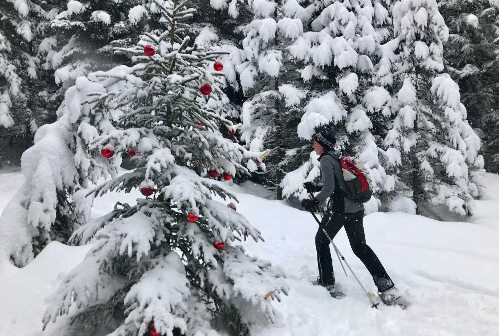 Wir waren an Weihnachten schneeschuhwandern: Mit geschmücktem Christbaum im Winterwald