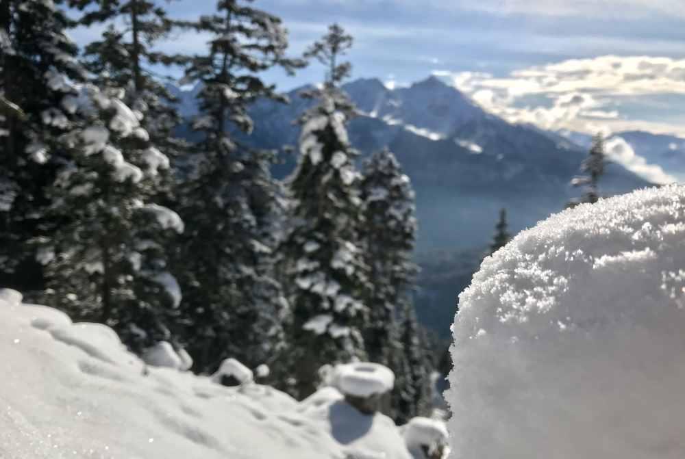 Schöne Winterstimmung im frischen Pulverschnee - hinten das Karwendel