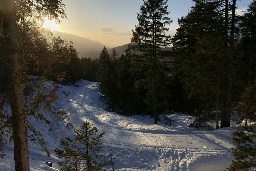 So stimmungsvoll ist die Hochegg Alm Winterwanderung in Seefeld am Nachmittag