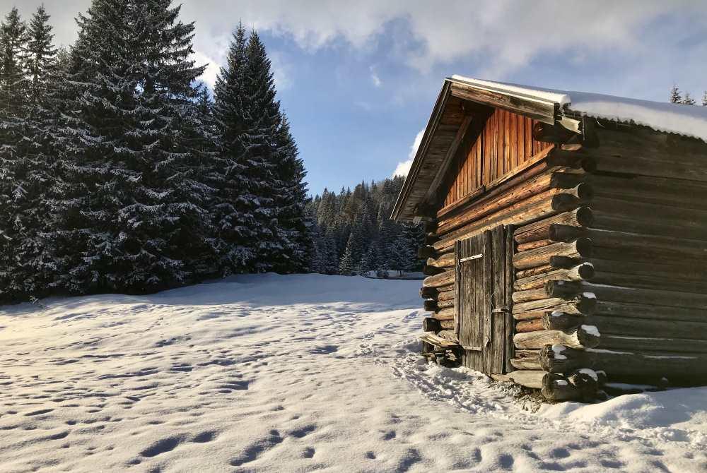 Im Wildmoos winterwandern zwischen Seefeld und Mösern