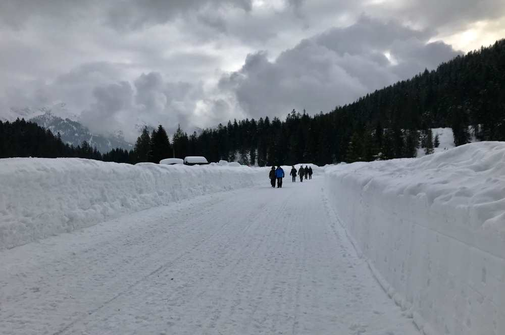 Das ist der breite Winterwanderweg im Wildmoos