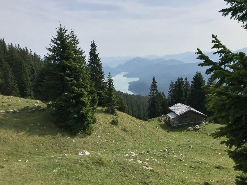 Hinter der Diensthütte funkelt der Walchensee zwischen den Bäumen