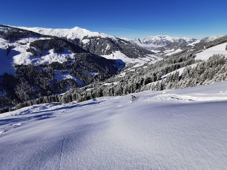 Skitour Alpbachtal - die Paradetour bei Neuschnee auf den Joel