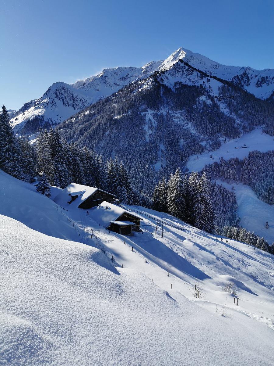 Skitour Alpbachtal: Die Lueger Alm liegt auf dem Weg zur Joelspitze