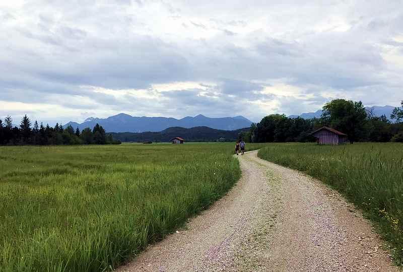 Der Staffelsee Rundweg im Moor am See