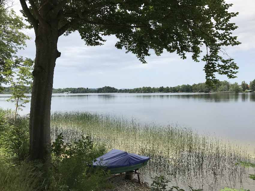 Die Staffelsee Wanderung direkt am See in Bayern bei Murnau