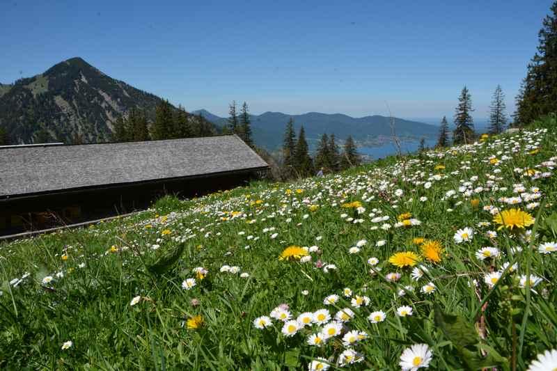 Genieß die schöne Landschaft auf dem Mountainbike