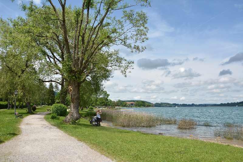 Tegernsee wandern mit Kindern - leichte Tour am Ufer entlang