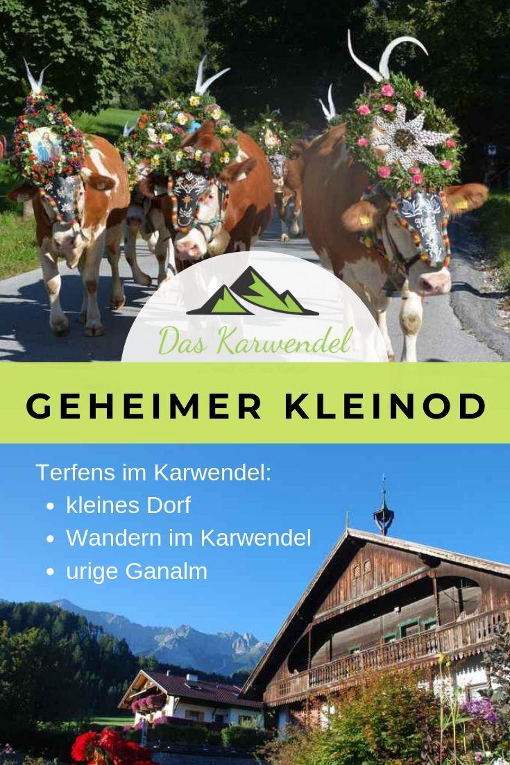 Truckertreffen - Thema auf comunidadelectronica.com