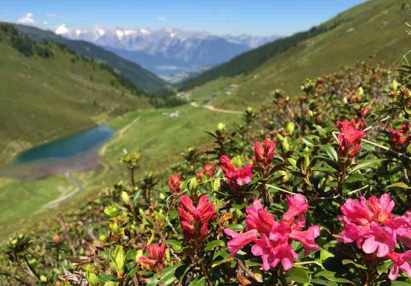 In den Tuxer Alpen mountainbiken bei Schwaz, die Bike Transalp am Geisljoch