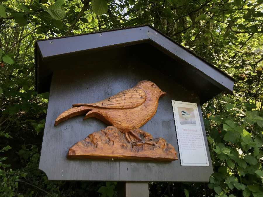 Eine Station auf dem Vogellehrpfad Hart im Zillertal