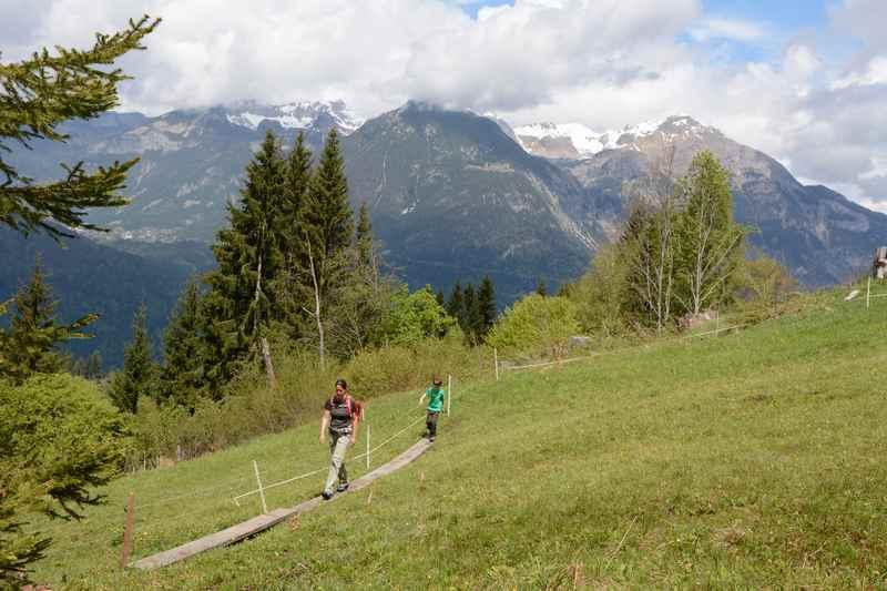 Über das feuchte Hochmoor auf Holzbohlen wandern in den Tuxer Alpen