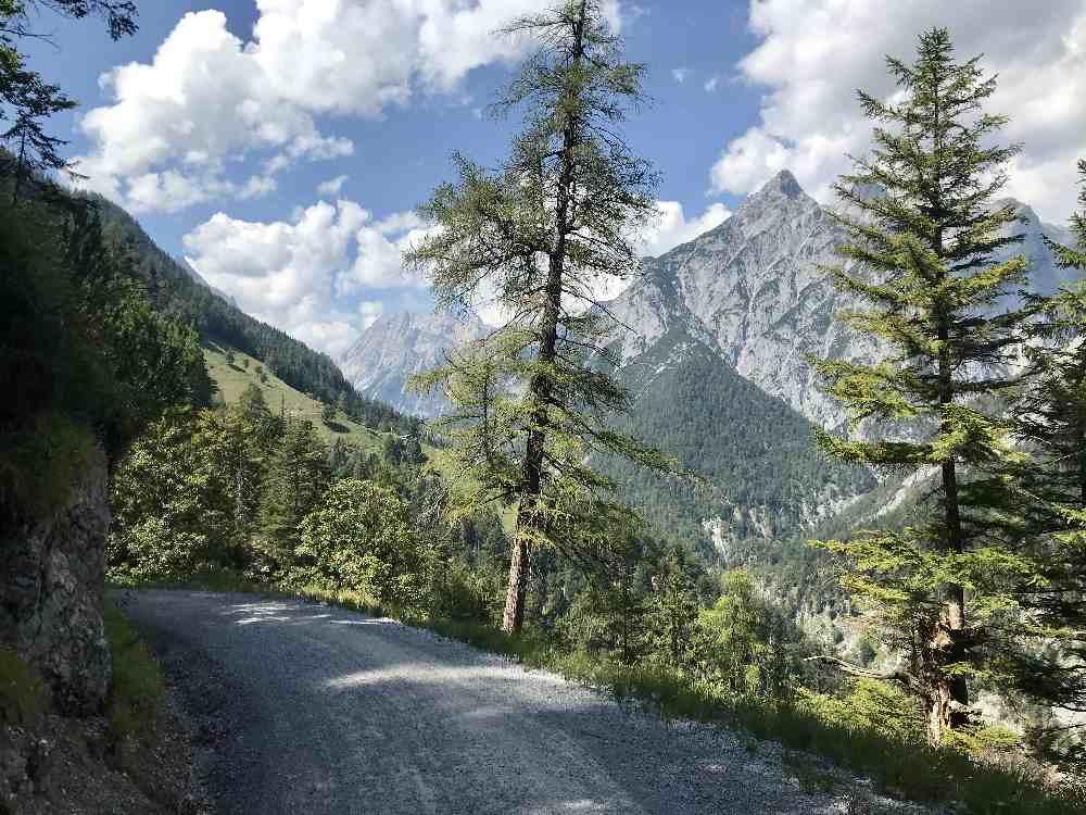 Auf diesem Forstweg zur Ganalm verläuft die offizielle MTB Route im Vomperloch