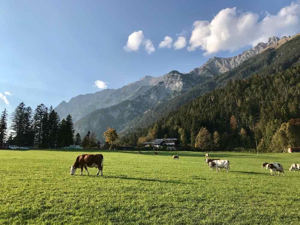 Vomperberg mit Blick auf das Karwendel: Das sonnige Plateau ist schön zum Wandern, vorbei an Kapellen und Bauernhöfen