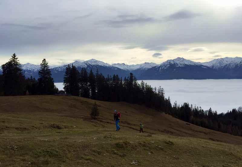 Gleich sind wir bei der Walderalm - hinten die Tuxer Alpen mit den weißen Gipfeln