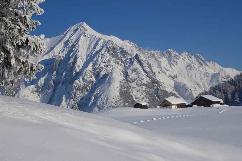 Hall in Tirol winterwandern zur Walderalm im Karwendel