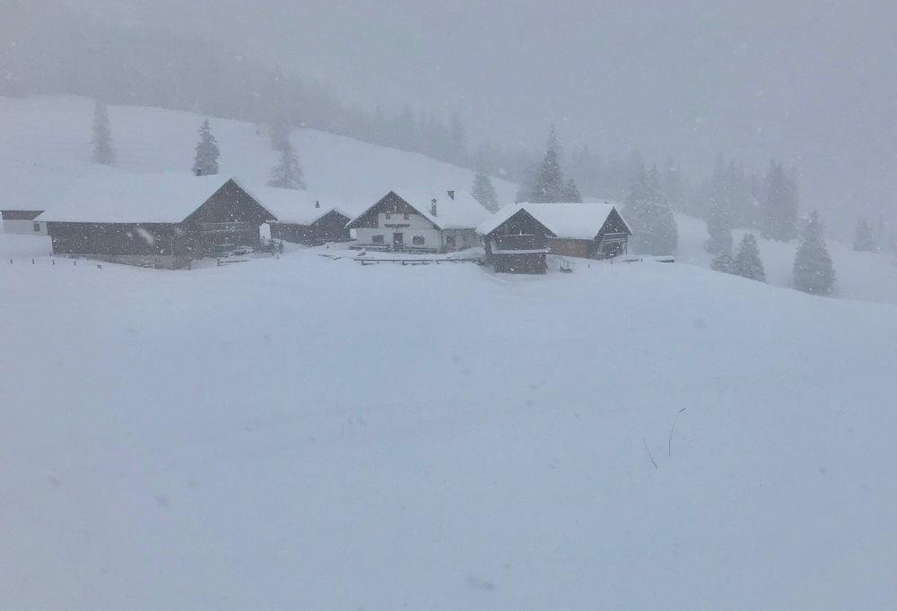 Im Schneetreiben zur Walderalm schneeschuhwandern - eine tolle Stimmung!