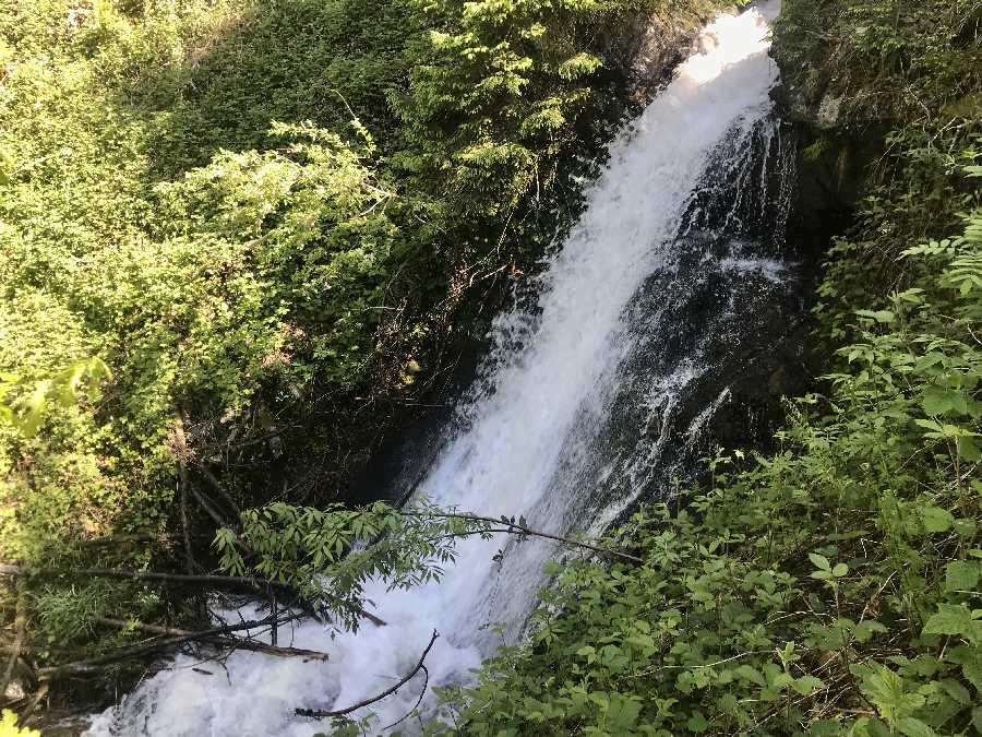 Wasserfall Zillertal - lautstark rauscht im Frühling das Wasser zwischen dem frischen Grün