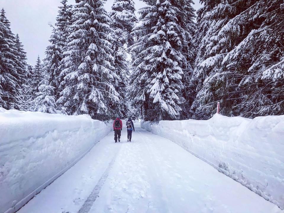 Die Seele baumeln lassen beim Winterwandern im Karwendelgebirge