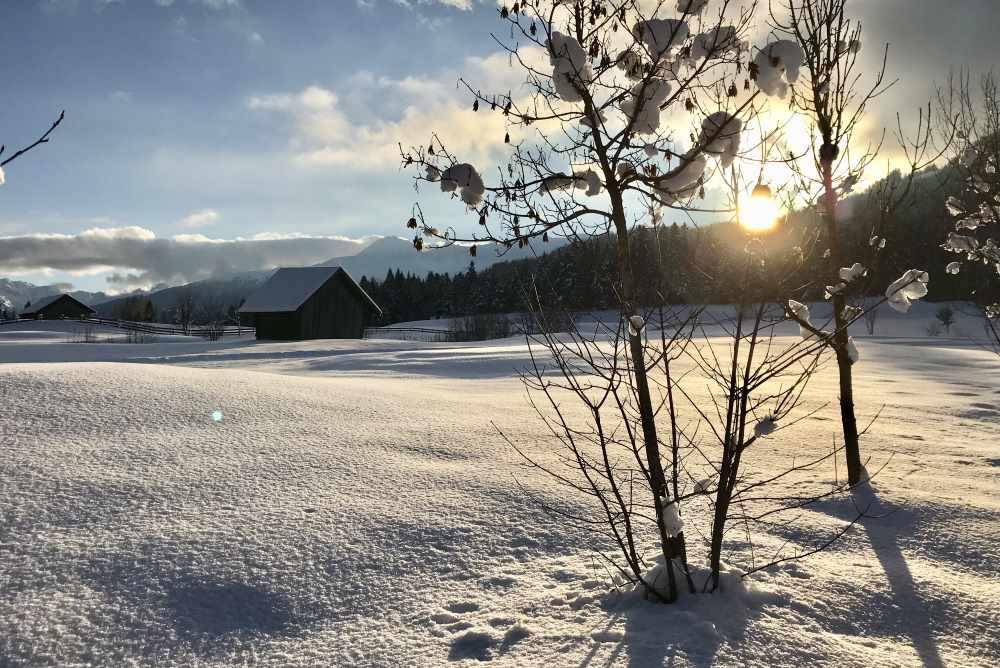 Stimmungsvolle Winterwanderungen beim Karwendel - hier in Seefeld Winter am Wildsee