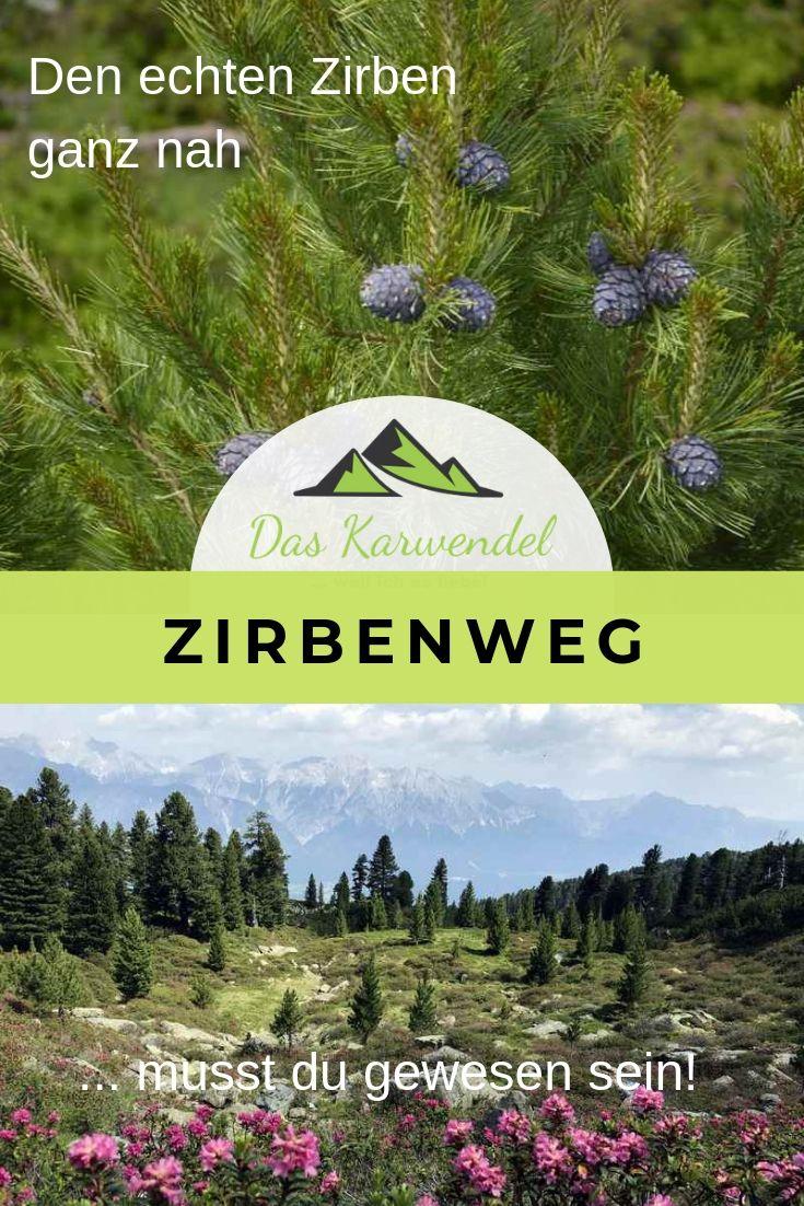 Einmalig schön - der Zirbenweg in den Tuxer Alpen