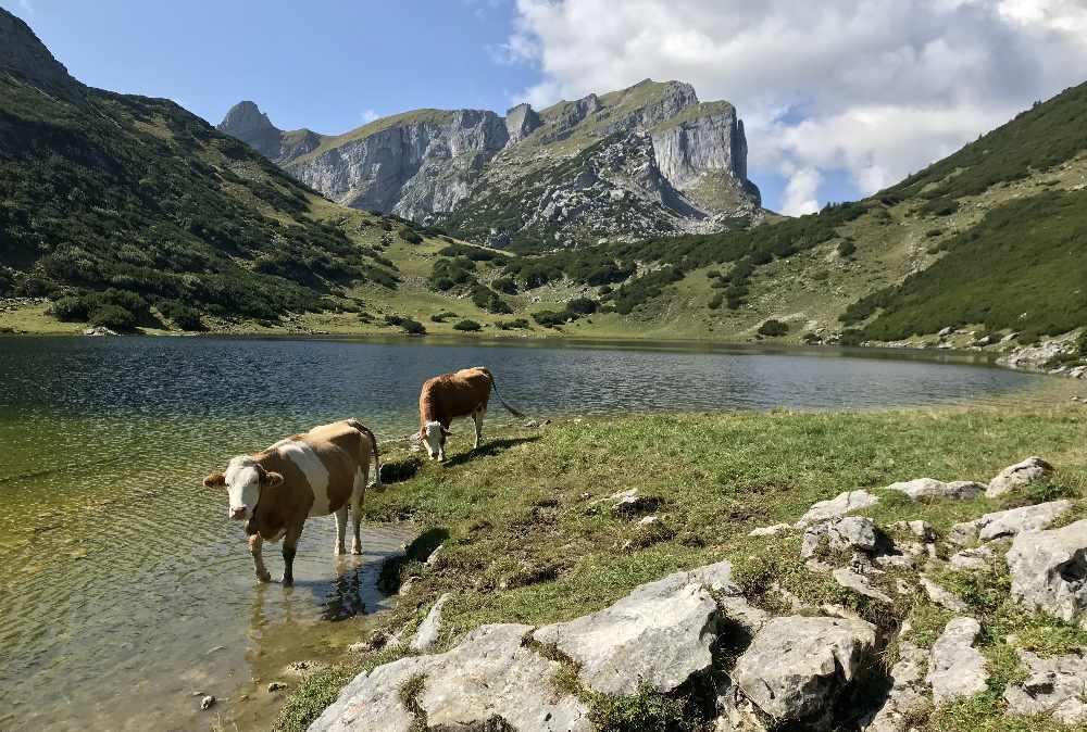 Im Sommer für mich einer der schönsten Plätze im Rofan: Der Zireiner See