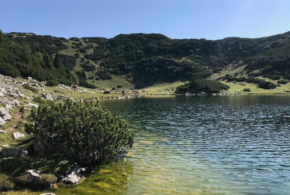 Danach kommst du direkt ans Ufer und kannst im Bergsee sogar baden oder schwimmen!