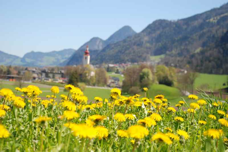 Auf Inntal Radweg bei Buch in Tirol