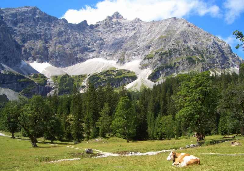 Hüttenwanderungen: Der kleine Ahornboden befindet sich auf der bekanntesten Hüttenwanderung im Karwendel, der mehrtägigen Karwendeltour.