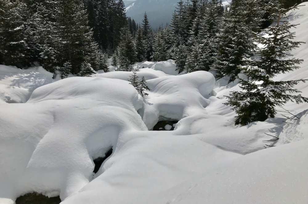 Tagsüber Wintergenuss im Schnee - ganz ohne Skifahren!