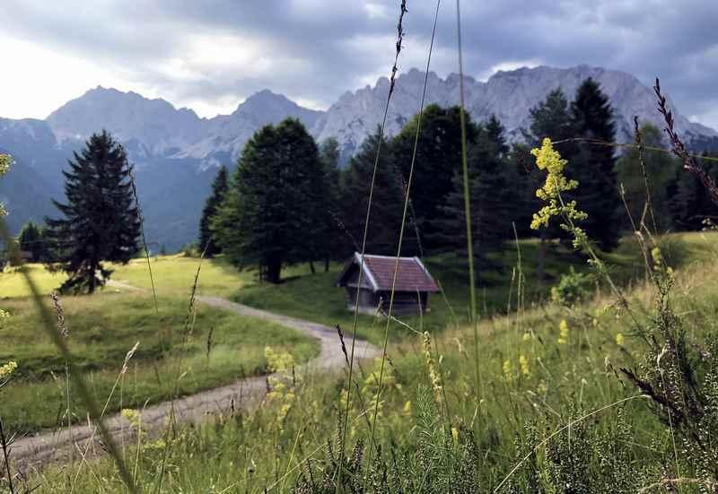 So schön kannst am Kranzberg in Mittenwald wandern - auf dem Weg zum Wildensee