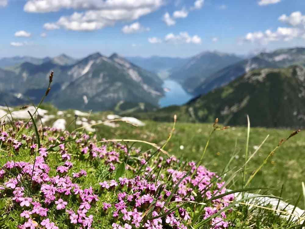In Stans wandern kannst du so - mit Blick auf den Achensee oder hinein in die Täler des Karwendel