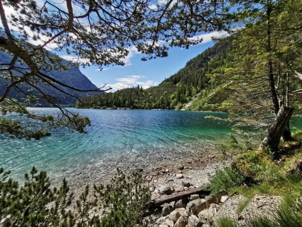 Entdecke die schönsten Buchten auf deinem Achensee Spaziergang
