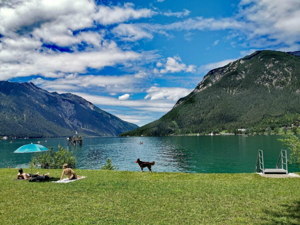 Achensee mit Hund - alle Tipps für deinen Hundeurlaub in Tirol