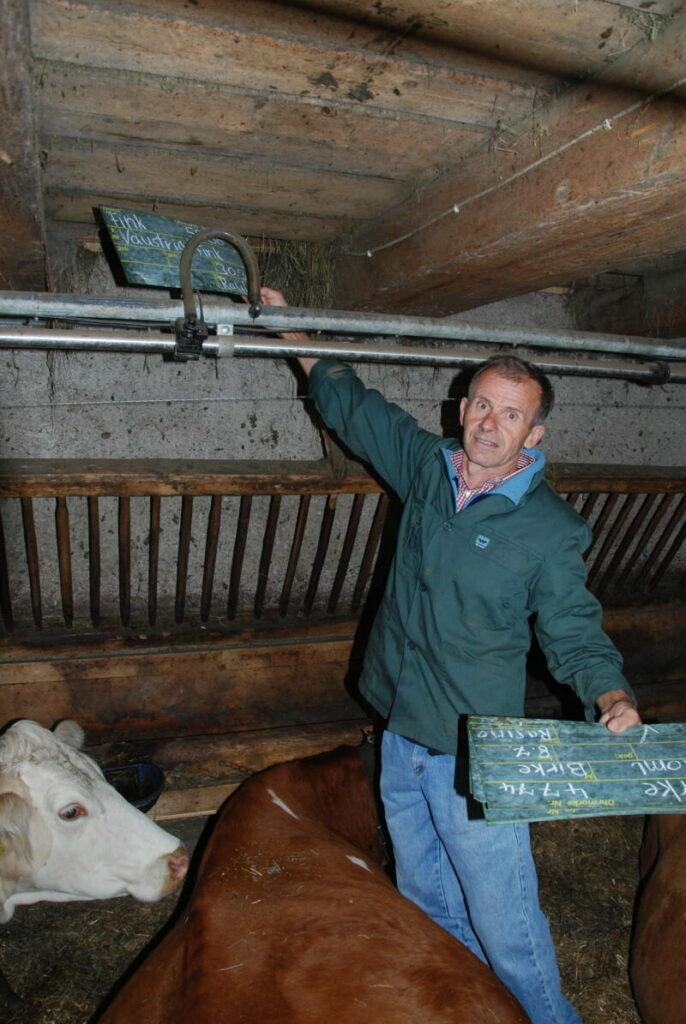 Gehört zum Almabtrieb dazu - die Namensschilder der Kühe abmontieren