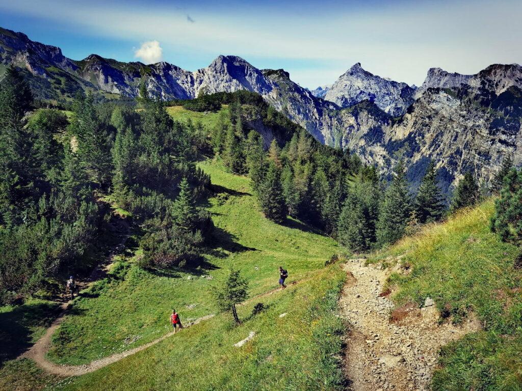 Vom Weissenbachsattel zum Bärenkopf wandern