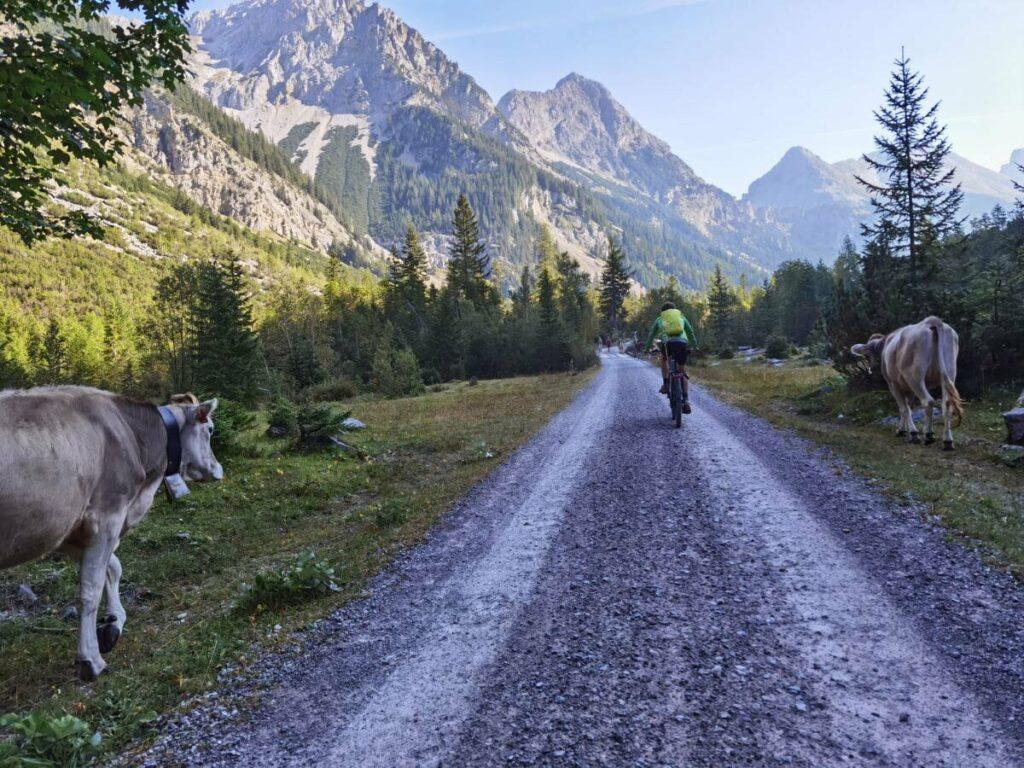 Birkkarspitze Bike & Hike Tour - ab Scharnitz mit dem Mountainbike oder E-Bike durch das Karwendeltal