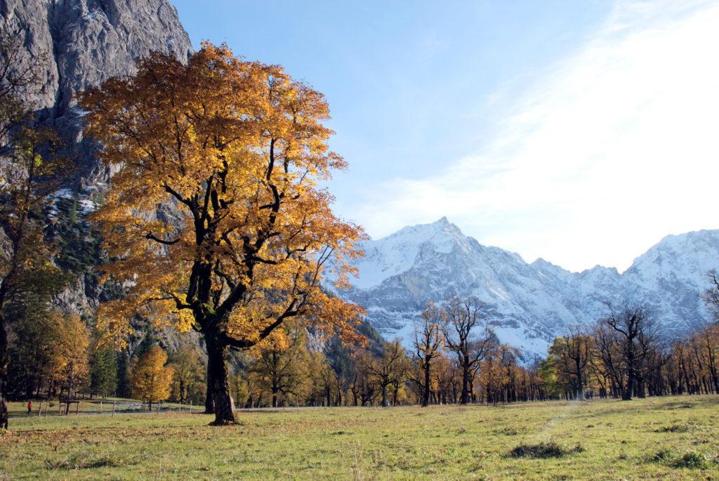 Herbst in Bestform: So schön ist dein Herbsturlaub am Großen Ahornboden