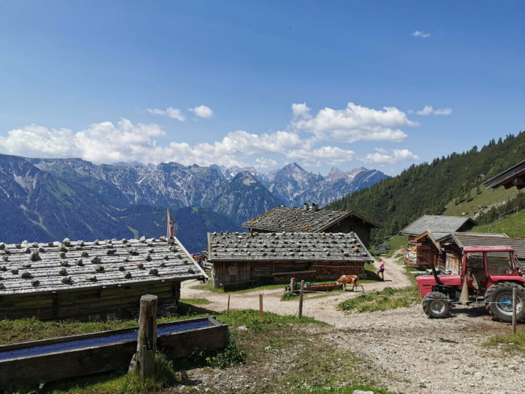 Die Dalfazalm - ein Bauernhof auf 1692 Metern Höhe im Rofan