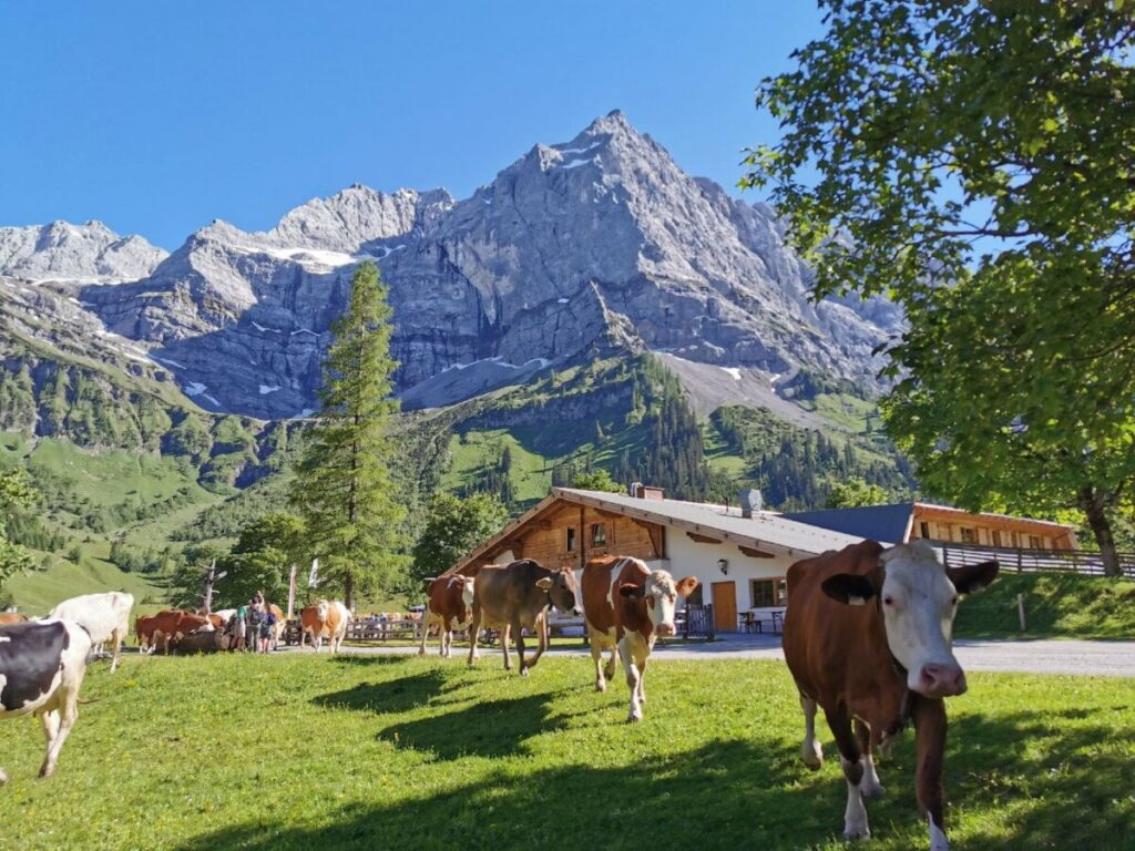 Die Ahornboden Hütten liegen in einer malerisch schönen Berglandschaft im Karwendel