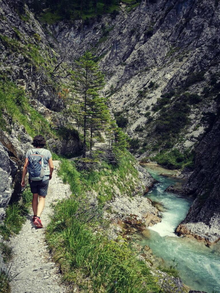 Seefeld wandern durch die Gleirschklamm: Der Steig führt immer am Wasser entlang