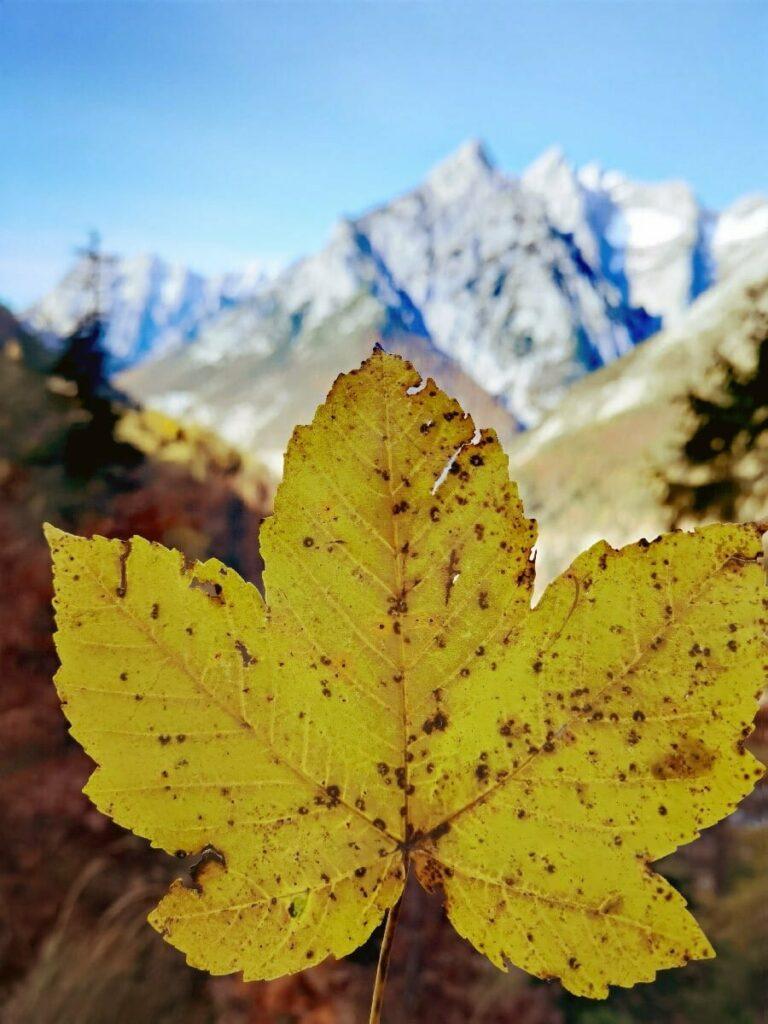 Herbst in Gnadenwald - auf dem Weg zur Ganalm