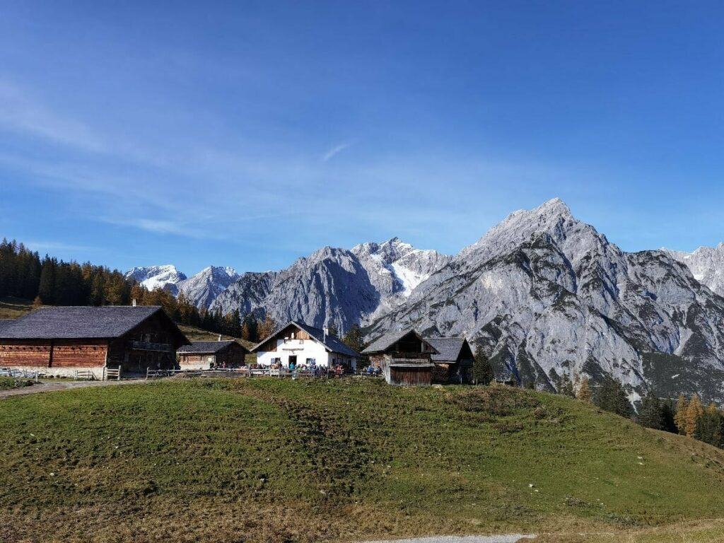 Die Walderalm in Gnadenwald, mit dem Karwendel